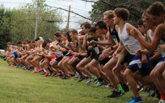 Trio in Top 10 as Trinity Takes Tiger Title