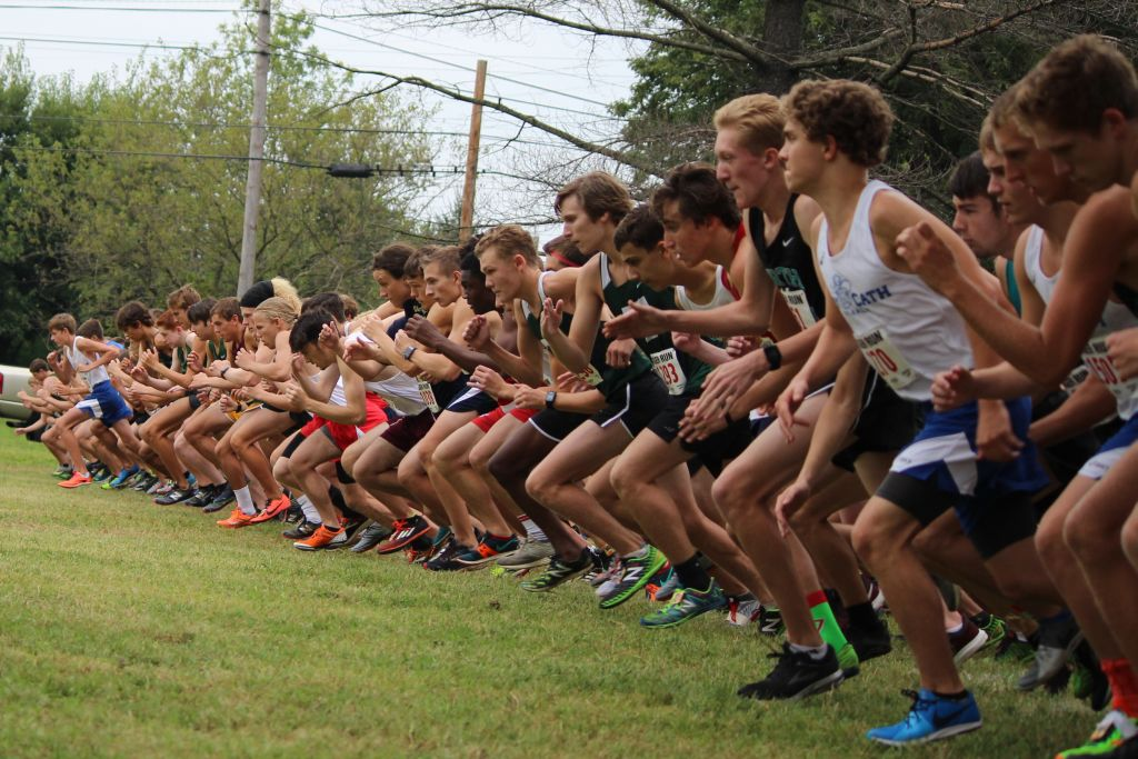 The Rocks claimed the No. 1 spot in the annual Tiger Run.