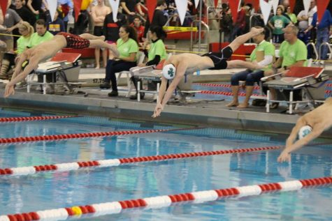 Swimming and Diving Rocks Dominate Region 5