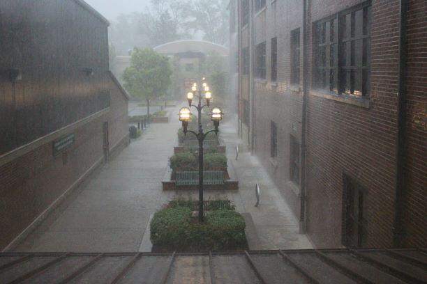 A+Spring+Rain